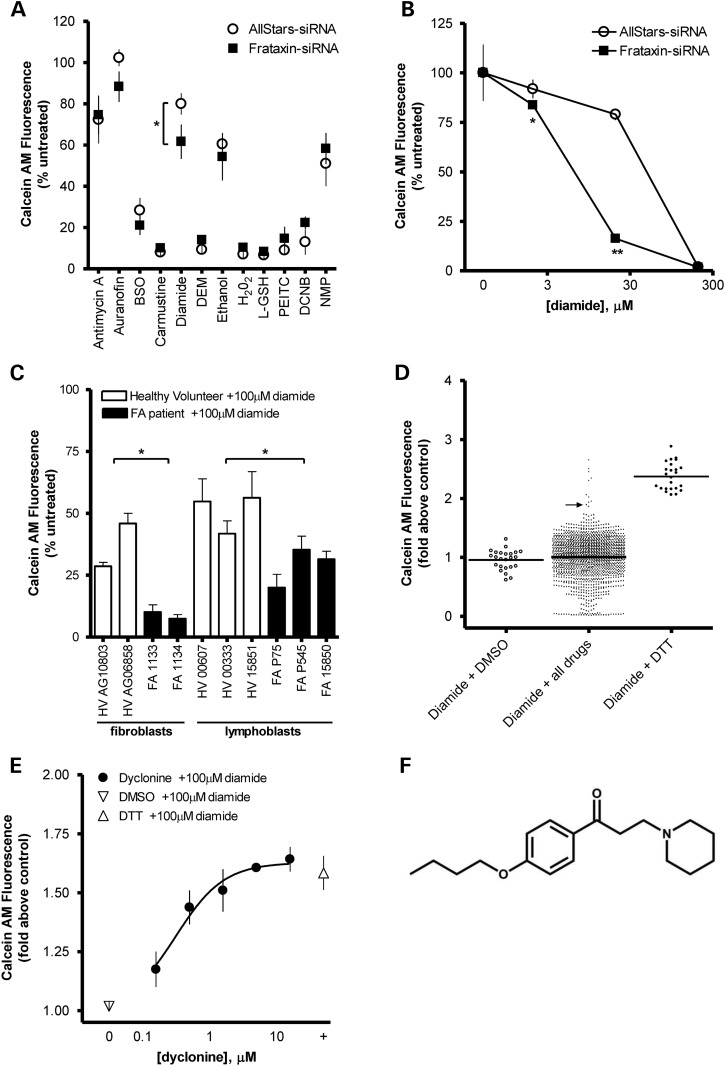 High-throughput screening reveals that dyclonine protects FA patient fibroblasts from diamide stress. ( A ) Effect of antioxidant inhibitors on 50B11 cell viability with FXN knockdown. Eleven inhibitors of thiol-related antioxidants were tested in an siRNA-mediated, FXN-deficient 50B11 DRG cell line [10 µM antimycin A, 1 µM auranofin, 100 µM BSO, 100 µM carmustine, 10 µM diamide, 0.1% diethyl maleate (DEM), 0.1% ethanol, 0.03% H 2 O 2 , 1 m m l -glutathione ( l -GSH), 0.1% phenethyl isothiocyanate (PEITC), 100 µM dichloronitrobenzene (DCNB) and 1 µM N -methyl protoporphyrin (NMP)]. Cell viability was measured with Calcein-AM after 24 h and normalized to untreated control ( n = 3). Increased sensitivity to cell death was induced by inhibitors of thiol-related antioxidants diamide and auranofin in FXN knockdown cells compared with AllStars non-targeting siRNA negative control. ( B ) FXN-dependent sensitivity to diamide is dose-dependent in 50B11 cells. Cell viability was measured with Calcein-AM after 24 h of treatment with 3–300 µM diamide and normalized to untreated control ( n = 3). ( C ) Friedreich's patient cells are sensitive to diamide. To confirm these effects in patient cells with low FXN, we tested 100 µM diamide in fibroblasts and lymphoblasts and found that patient cells were more sensitive to diamide compared with healthy control cells. ( D ) Results of high-throughput screen for drugs that protect from diamide toxicity. Significance is shown comparing healthy volunteer and FA patient lines grouped together. This cell-based assay in FA patient fibroblast cell line 1134 was further optimized for high-throughput screening in 96-well plates, with a mean Z ′-value of 0.75 ( n = 25). This platform was used to screen a library of 1600 drugs that have been approved for clinical use. FA fibroblasts were pretreated with 10 µM test compound, DMSO (negative control) or 300 µM dithiothreitol (DTT) (positive control) for 24 h and followed by 100 µM diamide for 24 h. Cell viability was measured with Calcein-AM. Screening data (diamide + all drugs) are the mean of two replicates and presented as fold above DMSO + diamide control. Arrow indicates dyclonine response. Mean + SD for the 1600 drugs was 1 ± 0.3; mean + SEM was 1 ± 0.01. Compounds that rescued from diamide toxicity greater than mean + 2× SD advanced to secondary screening, which included replication of protective effect in a concentration-dependent manner, 0.01–10 µM. ( E ) An example of dose-dependent protection by dyclonine. Dyclonine was added to FA fibroblast line 1134 for 24 h before 100 µM diamide treatment, and Calcein-AM viability is shown as fold above DMSO + diamide control. Intrinsic effect: 2.1 ± 0.49-fold above DMSO + diamide control; EC 50 : 0.36 ± 0.25 μM ( n = 3). ( F ) Chemical structure of dyclonine. The plotted data in A, B, C and E display mean responses and error bars represent SD ( n = 3–4). *P