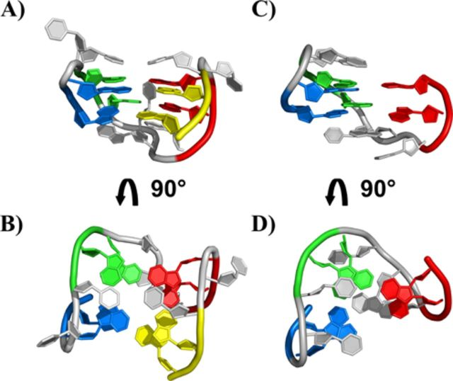 Representation of the 3D structure of the <t>TBA</t> DNA G-quadruplex (A, B) (PDB ID: 1QDF) and of the G-triplex conformation of the <t>11-mer-3′-t-TBA</t> fragment predicted by metadynamics calculation (C, D) ( 17 ). The four GG tracts of TBA are displayed with different color: G1-G2 in blue, G5-G6 in green, G10-G11 in red and G14-G15 (for TBA only) in yellow.