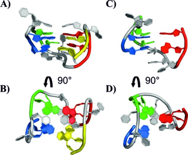 Representation of the 3D structure of the TBA DNA G-quadruplex (A, B) (PDB ID: 1QDF) and of the experimental structure of the 11-mer-3′-t-TBA fragment (C, D) (present work). The four GG tracts of TBA are displayed with different color: G1-G2 in blue, G5-G6 in green, G10-G11 in red and G14-G15 (for TBA only) in yellow.