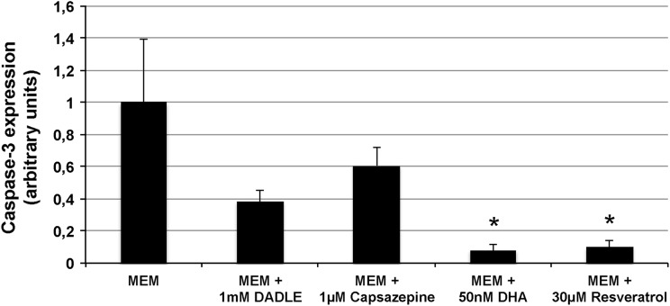 ImageJ quantification of caspase-3 expression after storage. Bar chart demonstrating caspase-3 expression in cultured ARPE-19 cells stored at 16 °C for 7 days. The cells were stored in unsupplemented MEM (control) or MEM supplemented with DADLE (1 mM), capsazepine (1 μM), DHA (50 nM) or resveratrol (30 μM). Compared to the unsupplemented MEM group, caspase-3 expression was significantly decreased for both DHA (50 nM) and resveratrol (30 μM) when assessed by ImageJ. * P