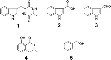 Compounds isolated from fermentation cultures of Lasiodiplodia sp. ME4 - 2. 1 , cyclo-(Trp-Ala); 2 , indole-3-carboxylic acid; 3 , indole-3-carbaldehyde; 4 , mellein; 5 , 2-phenylethanol.