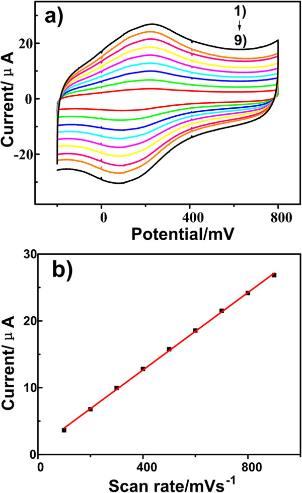 Cyclic voltammogram curves of the RT NP-modified CPEs at different scan rates. (a) CVs of the RT NP-modified CPEs in 0.1 M HAc-NaAc buffer containing 1.0 × 10 −3 mol/L <t>ractopamine</t> at different scan rates (1 to 9): 0.1, 0.2, 0.3, 0.4, 0.5, 0.6, 0.7, 0.8, and 0.9 mV s −1 . (b) Graph of anodic peak current versus scan rate.
