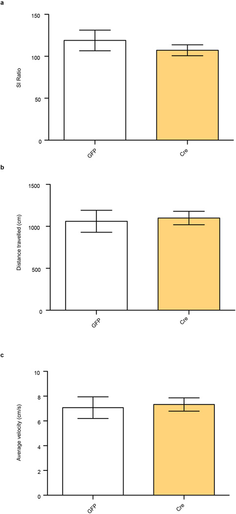 No effect of β-catenin deletion on baseline behaviors a, Social interaction (SI) in control, non-stressed animals (t 8 =0.840, P > 0.05, two tailed t-test, n=5/group). b, total distance traveled in arena (t 8 =0.251, P > 0.05, two tailed t-test, n=5/group). c, average velocity (t 8 =0.251, P > 0.05, two tailed t-test, n=5/group). Data is presented as mean and SEM. All data shown are representative of at least two experiments.