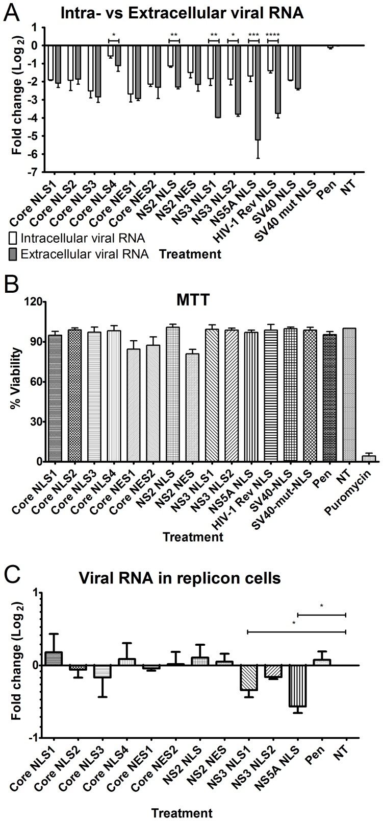 Effect of different nuclear transport signals bearing peptides on HCV infection. Cells were infected by HCV and treated with the indicated peptides. (A) Following 4 days of infection, virus titer was estimated by monitoring the levels of intracellular and extracellular viral RNA, using real time PCR. Significant differences between the intracellular and extracellular viral RNA levels are indicated by: * p