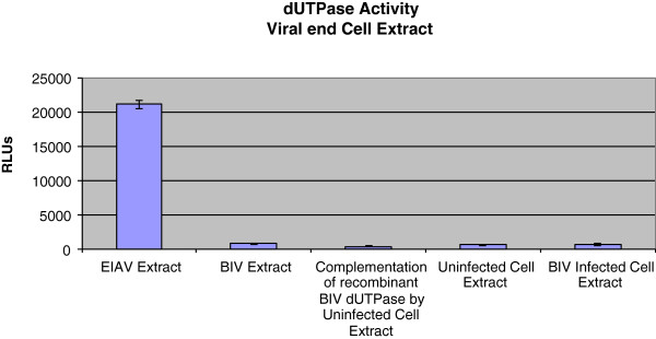 The dUTPase activity in virions and in cell extracts.  The PPiLight pyrophosphate detection assay was performed to measure the dUTPase activity in viral extracts of WT BIV and EIAV, in Cf2Th cells that were chronically-infected by WT BIV (generating ~10 7  viral particles/ml), or in uninfected Cf2Th cells. A dUTPase activity was also tested in a complementation assay of recombinant BIV dUTPase and the extract of uninfected Cf2Th cells. The assay conditions are described in Methods and in the text. All viruses and cells were lysed and then incubated at 37°C for 30min with dUTP-containing reaction buffer. Viral extracts were prepared from ~8.8 × 10 7  viral particles of either EIAV or WT BIV. Viruses were lysed using 0.5% Triton X-100 in the DMEM-FCS medium. Cell extracts were prepared from the pellets of ~5 × 10 4  infected or uninfected Cf2Th cells by disruption in 100μl of 0.5% Triton X-100 in PBS for 30minutes on ice (followed by removing the insoluble material at 15000rpm at 4°C). The activities in cells were then tested with equal amounts of the appropriate cell extracts. The complementation assay was performed by incubating 25ng (in 5μl) of the purified recombinant BIV dUTPase (the 74-residues version) with 10μl of uninfected Cf2Th cells extract (prepared from ~5 × 10 4  cells). All reactions were initiated by adding the 40μl of dUTP-containing assay buffer for 30min at 37°C, followed by heat inactivation, and then assayed as described in Methods. The shown values were obtained after subtracting the non-specific background produced with lysis buffer.