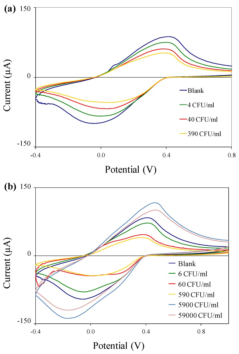 Cyclic voltammograms of immuno-c/sNP-cell solutions: ( a ) B. cereus cell concentrations ranging from 4 to 3.9 × 10 2 CFU/mL; and ( b ) E. coli <t>O157:H7</t> cell concentrations ranging from 6 CFU/mL to 5.9 × 10 4 CFU/mL.