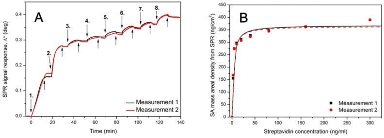 ( A ) Surface plasmon resonance (SPR) signal response after injecting 1.25–300 nM streptavidin in HEPES-EDTA buffer over MuOH:Biotin-PEG-thiol (85:15 mol%) SAM sensor surface. Down arrows represents the time of streptavidin injections: 1. = 2.5 nM, 2. = 5 nM, 3. = 10 nM, 4. = 20 nM, 5. = 40 nM, 6. = 80 nM, 7. = 160 nM and 8. = 300 nM. Up arrows represent the injection of buffer without streptavidin. ( B ) Mass areal density curve for streptavidin showing the Langmuir fit over the data points.