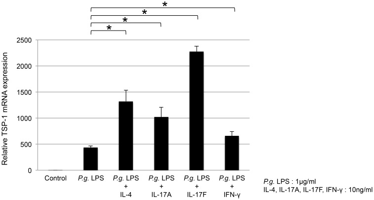 Effect of various cytokines on TSP-1 expression in THP-1 cells. THP-1 cells were co-stimulated with 1.0 µg/ml of P. gingivalis LPS and 10 ng/ml of each of IL-4, IL-17A, IL-17F, or IFN-γ for 4 h. TSP-1 mRNA expression was significantly enhanced by all co-stimulatory factors ( P