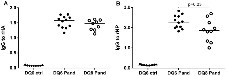 IgG-antibody levels to detergent treated recombinant HA (A) and NP (B) in the Pandemrix immunized mice transgenic for HLA DQB1*06∶02 (DQ6 Pand) or HLA DQB1*03∶02 (DQ8 Pand) and in the HLA DQB1*06∶02 transgenic mice immunized with PBS (DQ6 ctrl). IgG-antibodies to rNP are higher in the immunized HLA DQB1*06∶02 (DQ6 Pand) than in the immunized HLA DQB1*03∶02 transgenic mice (DQ8 Pand), whereas no difference is seen in the antibody levels to rHA in the EIA.