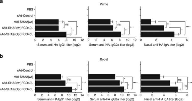 CD40L and HA2 codon-optimization enhance circulating and nasal anti-HA2 antibody response. HA2-specific antibody titers at 2 weeks after ( a ) priming and ( b ) boosting are shown for circulating IgG1 and IgG2a, and nasal IgA. Balb/c mice were intranasally immunized with 10 9 pfu of each rAd virus or with PBS on day 0 and boosted 2 weeks post primary immunization. Data are shown as mean titer±s.d. from one experiment out of three independent experiments, with n =3 mice per treatment group in each experiment. **** P