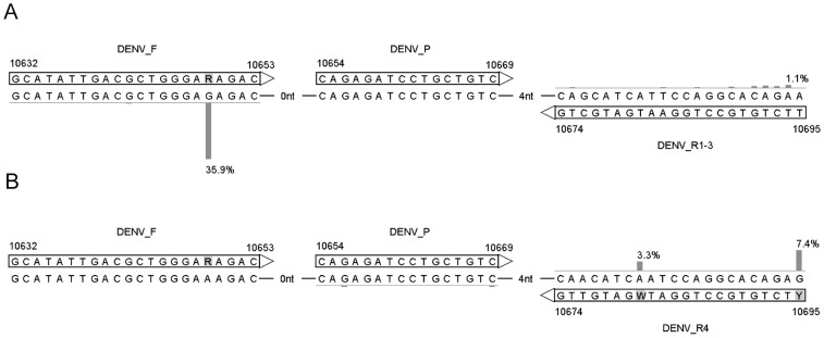 Overview of the primers and probe in the DENV RT-PCR assay. The reverse primers DENV_R1–3 (A) and DENV_R4 (B) were specifically designed to target DENV serotypes 1–3 and serotype 4, respectively. Vertical bars and percentages show the fraction of sequences with nucleotides deviating from the consensus of DENV serotypes 1–3 (A) and serotype 4 (B). Percentages below 1 are not shown. Numbers indicate genomic positions.