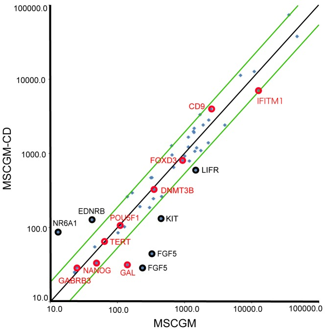 Microarray analysis of gene expression. Scatter plots compared the embryonic stem cell marker genes expression between chemically defined culture conditions (MSCGM-CD) and normal culture conditions (MSCGM) determined by DNA microarray. The green lines indicate the diagonal and 2-fold changes between the two samples. Black and red circles indicate the expression levels of some embryonic stem cell marker genes ( S3 Table ).