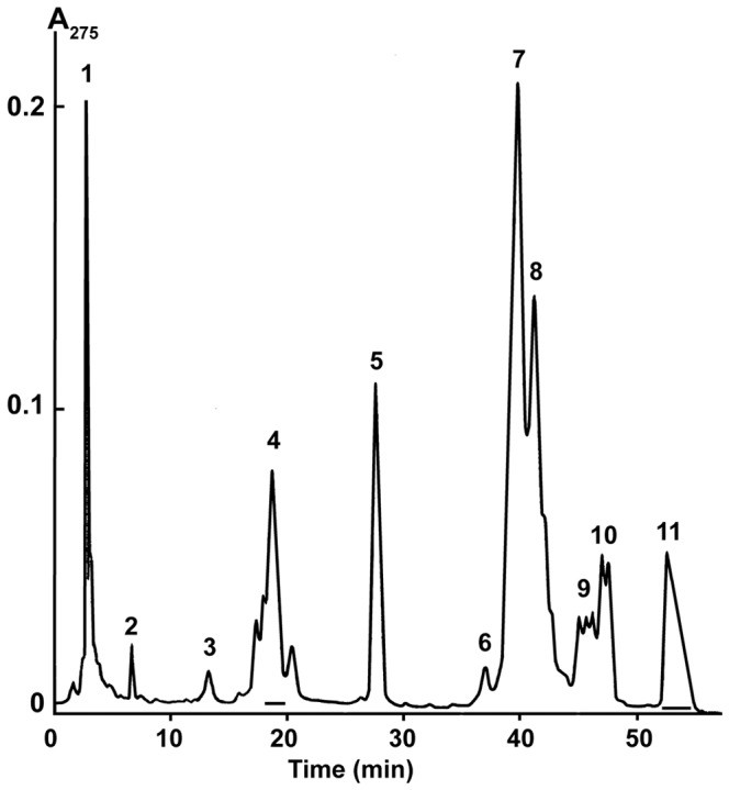 Isolation of vurtoxin and Vur-S49 by reverse-phase <t>HPLC.</t> Separation was done on a Discovery <t>BIO</t> Wide Pore C18 column (10×250 mm, Supelco) in a gradient of 25–40% (v/v) acetonitrile in 60 min in the presence of 0.1% (v/v) trifluoroacetic acid, at a flow rate of 2.0 ml/min. Fraction containing Vur-S49 (4) and vurtoxin (11) are indicated by horizontal bars.