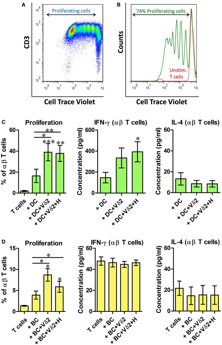 Vδ2-matured DC and B cells stimulate proliferation of resting allogeneic T cells . DC or B cells were co-cultured with HMB-PP-expanded human Vδ2 T cells in the absence or presence of HMB-PP (denoted H). After 24 h <t>CellTrace-labeled</t> allogeneic resting αβ T cells were added at a ratio of 10:1 and cultured for 6 days. (A) Representative dot plot showing proliferating T cells. (B) Histogram showing proliferating T cells (green peaks) versus unstimulated T cells (red peak) by flow cytometric analysis of cell trace dilution. (C) Average (±SEM) percentage of proliferating T cells when cultured with Vδ2-matured DC ( n = 10; left) and levels of IFN-γ and IL-4 secreted by cultures of Vδ2 T cell matured DC with αβ T cells ( n = 6–10). (D) Average (±SEM) percentage of proliferating T cells when cultured with Vδ2-matured B cells ( n = 4) and levels of IFN-γ and IL-4 secreted by cultures of Vδ2 T cell matured DC with αβ T cells ( n = 4). * p