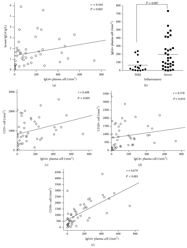 Correlation of <t>IgG4-positive</t> plasma cells with serum IgG4 and inflammatory infiltration in synovium of 46 RA patients. Spearman's rank order correlation test showed significant correlation of IgG4-positive plasma cells with serum IgG4 (a), CD3+ (c), CD20+ (d), and CD38+ cells (e). Patients with severe inflammatory infiltration ( n = 31) had higher IgG4-positive plasma cells than those with mild inflammatory infiltration in synovium ( n = 15) (b).