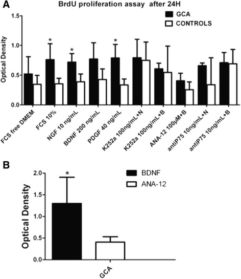 Effects of NTs and the inhibitors of Trk (K252a), TrkB (ANA-12) and p75 NTR (anti-p75) on TASMC proliferation in GCA patients and controls. Proliferation assay performed with a BrdU assay on day 1 (A) in serum-starved TASMC incubated with NT or NT receptor inhibitors, or a combination of NT and NT receptor inhibitors, in GCA patients ( n = 6) and controls ( n = 10). In all figures, bars represent the mean of three experiments with their SEMs. K252a: specific Trk receptor inhibitor; ANA-12: a specific TrkB receptor inhibitor; anti-p75: p75 NTR Ab inhibitor; N (NGF) or B (BDNF) + K (K252a) or anti-p75 NTR : NGF or BDNF are added at the same time with the specific inhibitor. (B) Effect of ANA-12 on GCA-derived TASMCs proliferation. Three independent assays were performed and cells were seeded in triplicate for each cell line. BDNF, brain-derived neurotrophic factor; GCA, giant-cell arteritis; NGF, nerve growth factor; NT, neurotrophin; SEM, standard errors of the mean; TASMC, temporal artery VSMC; Trk, tropomyosin receptor kinase; VSMC, vascular smooth muscle cell.