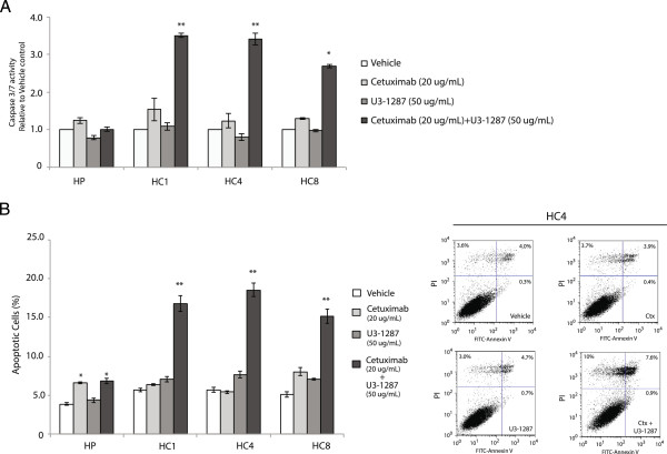 Cetuximab and U3-1287 induced apoptosis in Ctx R clones. (A) Combinatorial treatment with cetuximab and U3-1287 activates Caspase 3/7 compared to either drug alone in Ctx R clones. Caspase-3/7 activity was determined by Caspase 3/7-Glo assay. Data represent means ± s.e.m from 3 independent experiments (n = 9). *p