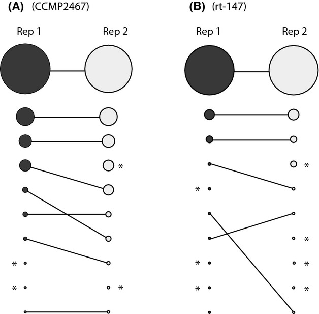 Reproducibility of pyrosequencing rDNA variants for replicated PCRs (using the same DNA extract) of isoclonal cultures (A) CCMP2467 and (B) rt-147 taking the top 10 most abundant sequence variants into account. The sizes of the circles represent relative abundance; circles with an asterisk represent distinct ITS2 variants.