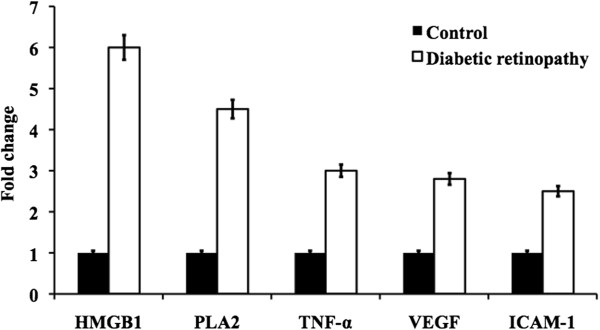 Represent the mRNA expression of HMGB1, PLA2, TNF-α, VEGF, ICAM-1 from the retinal tissue of control and diabetic retinopathy rats.