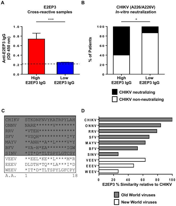 Association of E2EP3 cross-reactive antibody responses with CHIKV neutralizing activity. A, Anti-E2EP3 antibody response in serum samples (High E2EP3 IgG responders, n = 10; Low E2EP3 IgG responders, n = 15), at a dilution of 1∶4,000 were determined by ELISA using biotinylated E2EP3 peptides. Data are presented as mean ± SEM. Data are representative of two independent experiments with similar results. Statistical significance was measured using Mann-Whitney U test (*** P