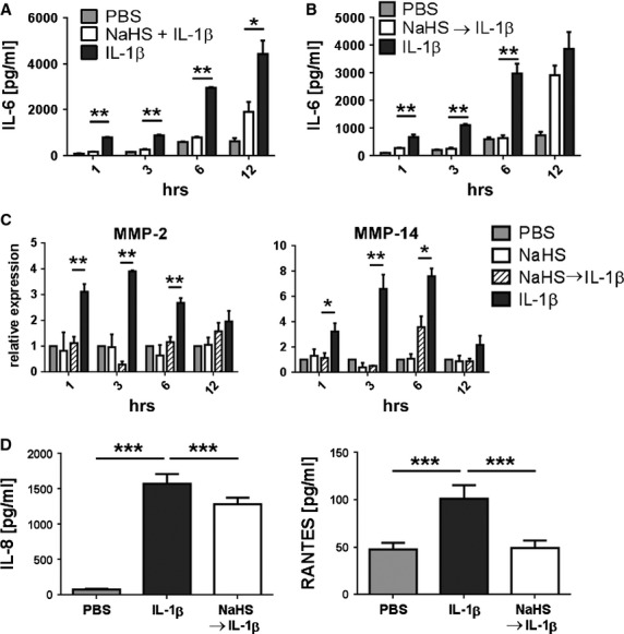 NaHS decreases secretion of IL-6, IL-8 and RANTES and diminishes expression of MMP-2 and MMP-14 in IL-1β -stimulated FLS. FLS were either ( A ) treated simultaneously with IL-1β + NaHS or ( B and C ) were pre-treated with NaHS for 1 hr following 1 hr stimulation with IL-1β. PBS and IL-1β-treated FLS were used as negative and positive control, respectively. Cells were further incubated in sulphur-free medium for 1, 3, 6 or 12 hrs. ( A and B ) IL-6 secretion was analysed in cell culture supernatants by ELISA; ( C ) cells were harvested and the expression of MMP-2 and MMP-14 was determined by <t>qRT-PCR.</t> Data were normalised to GAPDH expression. ( D ) For measuring IL-8 and RANTES secretion cells were pre-treated with NaHS or PBS for 1 hr, stimulated with IL-1β for an additional h and incubated in fresh medium for 3 hrs. In all experiments FLS from three different patients were tested three times in duplicates or two times in triplicates. ( A ) * P
