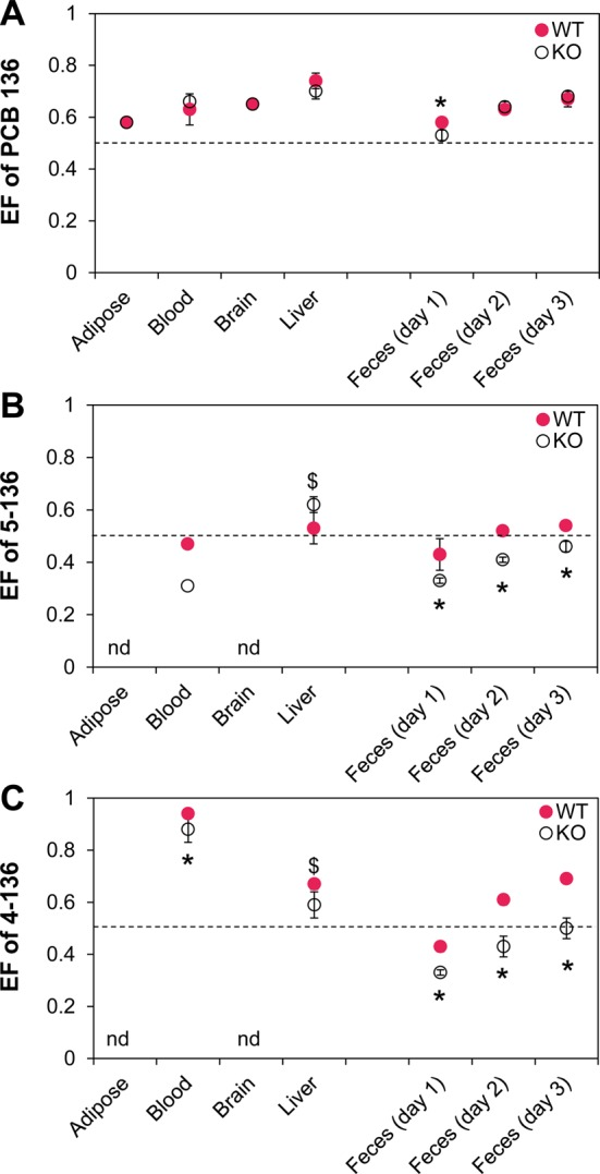 Comparison of the enantiomeric fractions (EFs) of PCB 136 (A), 5-136 (B), and 4-136 (C) in tissues and feces reveals significant differences in the atropisomeric enrichment between female mice with a liver-specific deletion of the cpr gene (KO) and congenic wild type (WT) mice. The EF values are presented as the mean ± standard deviation and were determined in the tissues of individual PCB l36-treated KO ( n = 7) and WT mice ( n = 5). The only exceptions are the EF determination for 5-136 in blood, which were performed with a single sample pooled by genotype. A CB column was used to separated PCB 136 and 4-136, whereas a BDM column was used for separation of 5-136 (see Table S12 for additional details). * Significantly different from WT ( t test, p