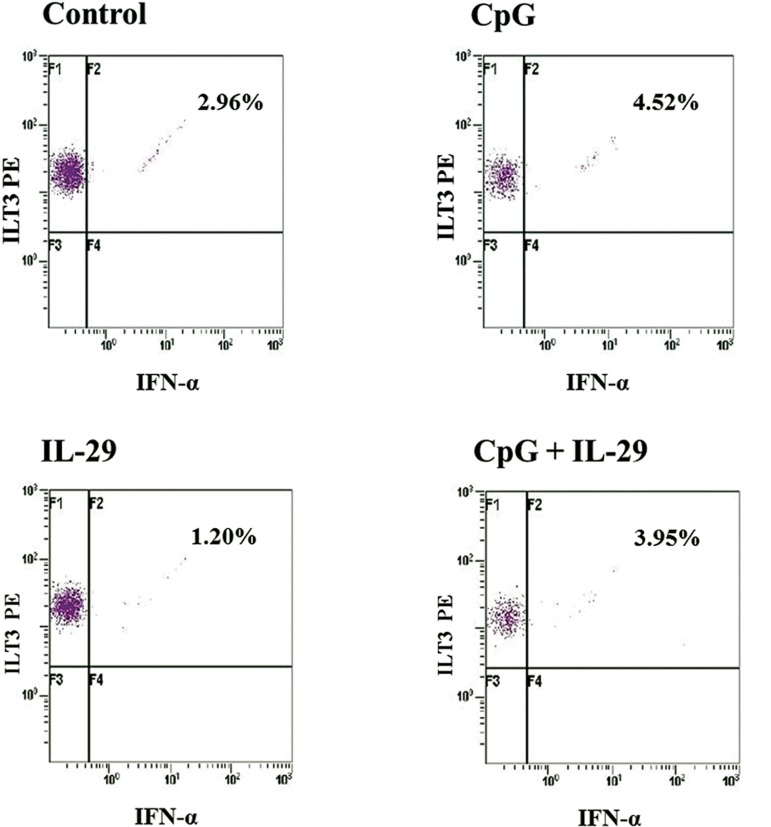 Production of IFN-α in plasmacytoid dendritic cells (pDC) in response to CpG or IL-29 as measured by intracellular flow cytometry. A. I (control). Among cells gated as <t>pDCs,</t> 2.96% of cells produced IFN-α. B. II (CpG alone). The cells that produced IFN-α increased to 4.52% compared to the control. C. III (IL-29 alone). Among cells gated as pDC, 1.20% produced IFN-α. D. IV (CpG and IL- 29). A total of 3.95% of cells produced IFN-α which was similar to peripheral blood mononuclear cells <t>(PBMCs)</t> treated with CpG alone.