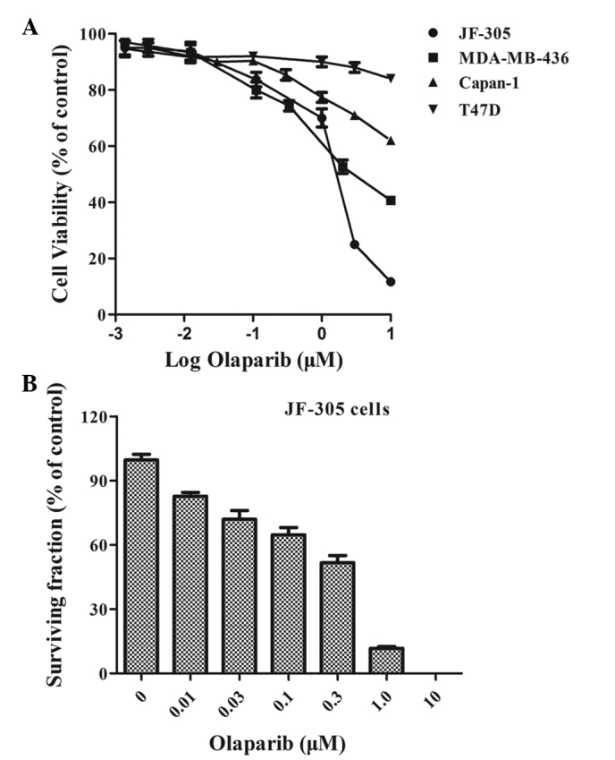 Olaparib induces the DNA damage, cell cycle arrest and