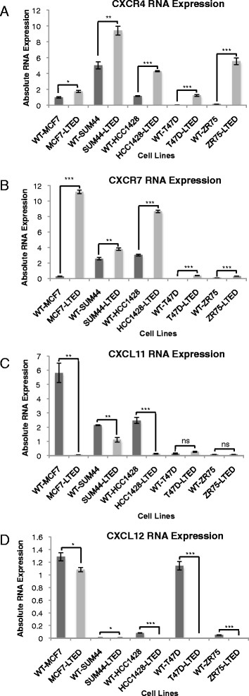 CXCR4 , CXCR7, CXCL11 and CXCL12 expression in five oestrogen receptor–positive human breast cancer cell lines adapted to long-term oestrogen deprivation. Expression of CXCR4 (A) , CXCR7 (B) , CXCL11 (C) and CXCL12 (D) in wild-type (WT) and their corresponding long-term oestrogen-deprived (LTED) cell lines. CXCR, C-X-C chemokine receptor; CXCL, C-X-C chemokine ligand. Bars represent ± standard error of the mean (SEM) *P
