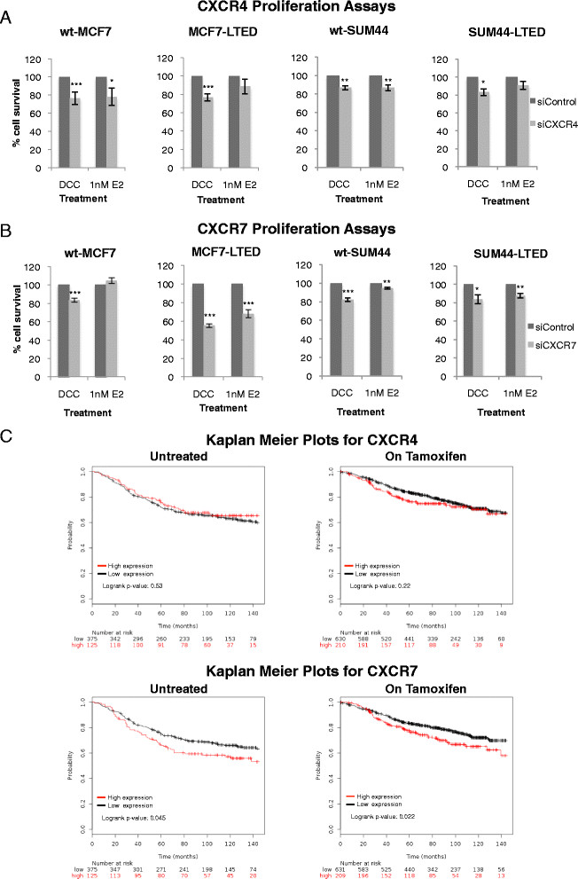 Analysis of CXCR4 and CXCR7 in cell lines and clinical data on association with recurrence of oestrogen receptor–positive breast cancer. wt-MCF7, MCF7-LTED, wt-SUM44 and SUM44-LTED cells were transfected with si CXCR4 (A) or si CXCR7 (B) versus si control ± exogenous oestradiol (E2) (1 nM). Cells were cultured for 6 days. Cell survival was measured using CellTiter-Glo. The data are expressed as fold changes relative to si control . Each treatment was carried out with eight replicates. The data shown are representative of a minimum of five independent experiments. Bars represent ± standard error of the mean (SEM). * P