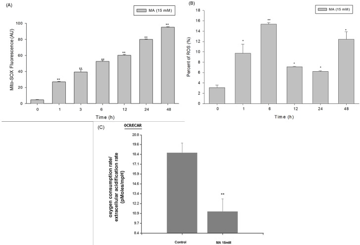 Increase of oxidative stress and anaerobic glycolysis in HaCaT cells treated with malic acid. ( A ) Malic acid increased mitochondrial ROS production in HaCaT cells detected by flow cytometry; ( B ) malic acid increased ROS production in terms of increasing 2',7'-dichlorodihydrofluorescein (DCF) fluorescence intensity in HaCaT cells detected by flow cytometry; ( C ) The mean values of oxygen consumption rate (OCR) and extracellular acidification rate (ECAR) were measured in real-time by a Seahorse XF24 Analyzer. Data are presented as means ± S.D. of the results from three independent experiments ( ** p