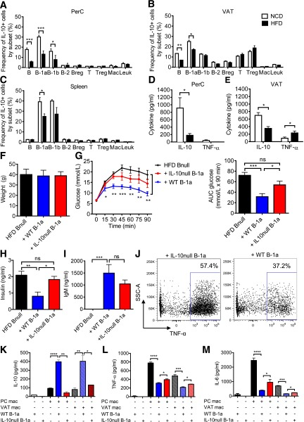 IL-10 production is impaired in obese mice. A – C : Frequency of GFP + cells within each subpopulation in the PerC, VAT, and spleen from IL-10 EGFP mice fed the NCD or HFD for 9 weeks ( n = 5–6, representative of three experiments). D and E : IL-10 and TNF-α concentration in 48-h PerC and VAT culture supernatants ( n = 6). Body weights ( F ), GTT with AUC analysis ( G ), and fasting insulin ( H ) of HFD B null mice 1 week after receiving PBS, WT B-1a, or IL10 null B-1a cells ( n = 5). I : Serum IgM concentration 1 week after B-1a cell transfer ( n = 5). J : TNF-α production in VAT macrophages. FACS plots are representative of two experiments. SSC-A, side scatter-area. Cytokine concentrations of IL-10 ( K ), TNF-α ( L ), and IL-6 ( M ) in 60-h coculture of WT PerC and VAT macrophages with WT or IL-10 null B-1a cells ( n = 3 per group, two replicates). Values are given as mean ± SEM. * P