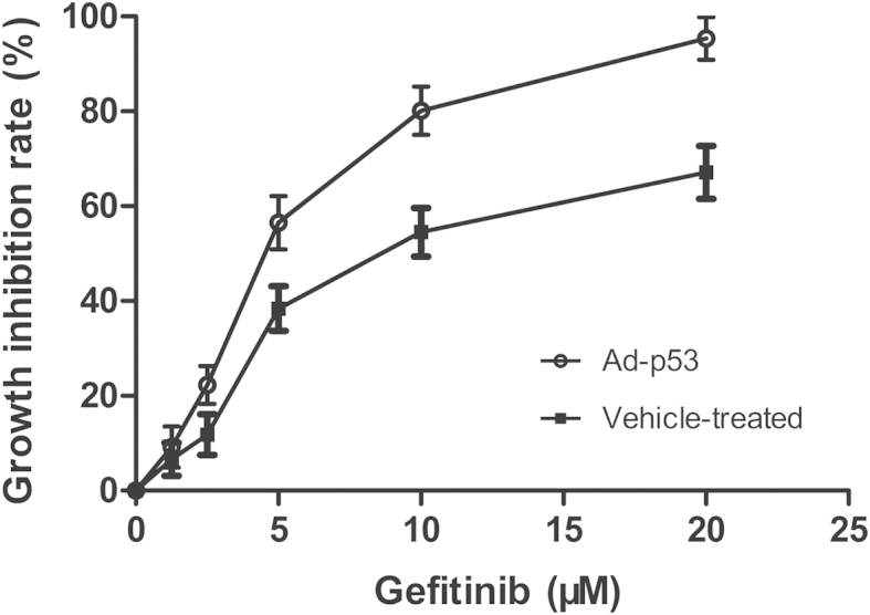 Effects of <t>gefitinib</t> with or without Ad-p53 on the growth of MDA-MB-468 cells. Firstly, cells were infected by Ad-p53 for 24 h; vehicle-treated cells were treated with DMSO. Then, cells with or without Ad-p53 were treated by fixed-ratio concentrations of gefitinib for 48 h, and cell viability was assessed by MTT assay. The results represent means ± SEM from three independent experiments. Ad-p53, recombinant human p53 adenovirus; DMSO, dimethyl sulfoxide.