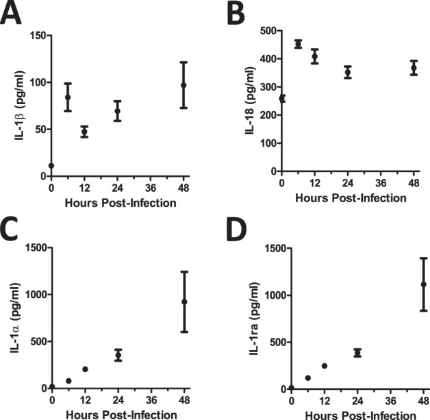C57BL/6 mice show differential expression of IL-1α and IL-1ß after A. fumigatus infection. Mice were infected i.t. with 5×10 7 CEA10 conidia and at indicated time-points, mice were euthanized, bronchoalveolar lavage fluid (BALF) collected, and lung tissue homogenized. IL-1β (A) , IL-18 (B) , IL-1α (C) , and IL-1Ra (D) levels in lung homogenate (IL-1α) and BALF (IL-1β, IL-18, and IL-1Ra) were measured using ProcartaPlex Mouse Cytokine Chemokine 36-plex Immunoassay or ELISA. Data are representative of four mice per time point and two independent experiments. Each dot represents the mean ± one SEM.