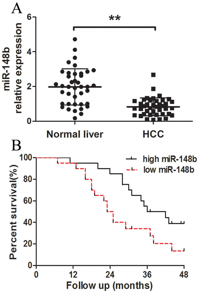 Analysis of miR-148b expression in human HCC tissues and survivals of HCC patients. (A) The relative expression levels of miR-148b in human HCC tissues (n = 40) and matched normal liver tissues (n = 40) were detected by qRT-PCR. U6 was used as the control for RNA loading, and miR-148b abundance was normalized to U6 RNA. (B) Kaplan- Meier curves of overall survivals of 40 HCC patients, according to miR-148b expression scored as low expression (below the median value, n = 20) and high expression level (above the median value, n = 20). MiR-148b downregulation correlated significantly with shorter overall survivals. P-value was shown with log-rank test. **P
