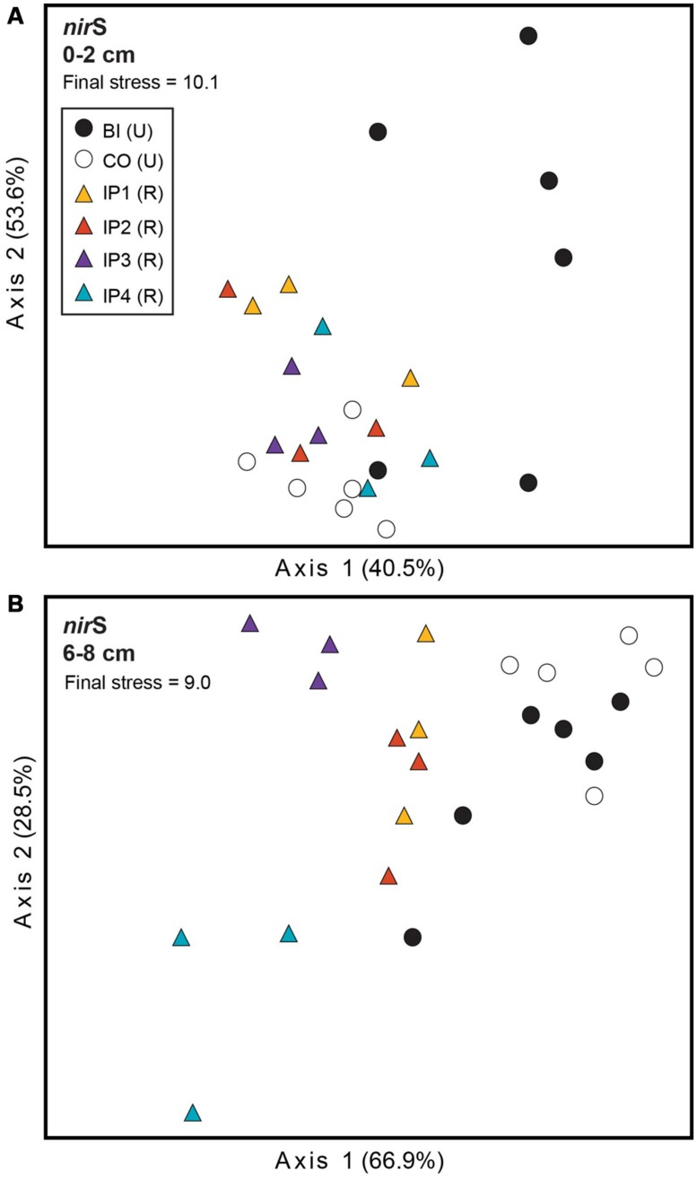 Non-metric multidimensional scaling (NMS) plot of TRFLP profiles for nir S genes in surface (A) and deep (B) sediments. Percent variability explained by each axis is shown parenthetically on the axis labels. In both panels, triangles represent restored (R) marshes (Impoundments 1–4); circles represent undisturbed (U) marshes from Barn Island (BI) or Cottrell (CO) marshes.