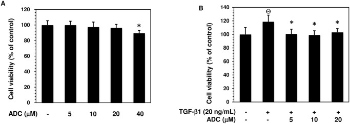 Effect of ADC on MCF-7 cell viability. ( A ) MCF-7 cells were incubated with increasing concentrations of ADC (5–40 μM) for 48 h. ( B ) Cells were pre-treated with ADC (5–20 μM) for 2 h, and then incubated with TGF-β1 for 48 h. Cell viability was determined by MTT colorimetric assay. The percentage of cell viability was cauculated by the absorption of control cells (0.1% DMSO) as 100%. The data reported as mean ± SD of three independent experiments. Θ P