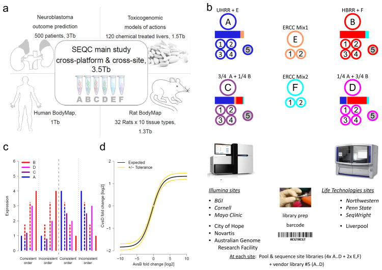 The SEQC (MAQC-III) project and experimental design. ( a ) Overview of projects. We report on a group of studies assessing different sequencing platforms in real-world use cases, including transcriptome annotation and other research applications, as well as clinical settings. This paper focuses on the results of a multi-center experiment with built-in ground truths. ( b ) Main study design. Similar to the MAQC-I benchmarks, we analysed RNA samples A to D: Samples C and D were created by mixing the well-characterized samples A and B in 3:1 and 1:3 ratios, respectively. This allows tests for titration consistency ( c ) and the correct recovery of the known mixing ratios ( d ). Synthetic RNAs from the External RNA Control Consortium (ERCC) were both pre-added to samples A and B before mixing and also sequenced separately to assess dynamic range (samples E and F). Samples were distributed to independent sites for RNA-seq library construction and profiling by Illumina's HiSeq 2000 (3 official + 3 inofficial sites) and Life Technologies' SOLiD 5500 (3 official sites + 1 inofficial site). Unless mentioned otherwise, data presented shows results from the three official sites ( italics ). In addition to the four replicate libraries each for samples A to D per site, for each platform, one vendor-prepared library A5…D5 was being sequenced at the official sites, giving a total of 120 libraries. At each site, every library has a unique bar-code sequence and all libraries were pooled before sequencing, so each lane was sequencing the same material, allowing a study of lane specific effects. To support a later assessment of gene models, we sequenced samples A and B by Roche 454 (3x, no replicates, see  Supplementary Notes Section 2.5 ). ( c ) Schema illustrating tests for titration order consistency. Four examples are shown. The dashed lines represent the ideal mixture of samples A and B (blue and red) expected for samples D and C (magenta and dark purple). ( d ) Schema illustrating a consistency test for recovering the expected sample mixing ratio. The yellow lines mark a 10% deviation from the expected response (black) for a perfect mixing ratio. Both tests ( c ) and ( d ) will reflect both systemic distortions (bias) and random variation (noise).