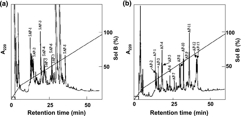HPLC separation profiles of peptide fragments produced by protease digestion of  S -HMGSH dehydrogenase from  Paecilomyces variotii  NBRC 109023.  a  Digestion by  Staphylococcus aureus  protease and  b  digestion by  Achromobacter  protease. HPLC separation of the resulting peptide fragments was performed at a rate of 1.0ml/min with solvent A (0.1% ( v / v ) TFA in water) and solvent B (0.1% ( v / v ) TFA in 60% ( v / v ) acetonitrile). A TSK gel ODS-120T column was used for the separation. The column was equilibrated with solvent A, and peptide fragments were eluted by a linear gradient of solvent B (from 20% ( v / v ) to 100% ( v / v )) over 55min