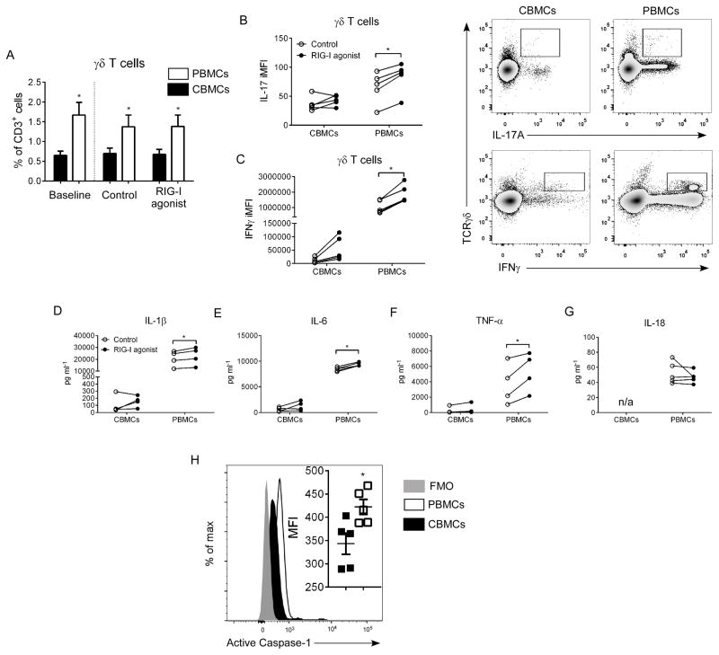 Impaired IL-17A and IFNγ responses in γδ T cells following inflammasome activation in human cord blood mononuclear cells Human CBMCs and adult PBMCs (2 × 10 5 cells/well) were treated in vitro with a RIG-I agonist (1 μg/ml, 48 hr). ( A ) γδ T cells were quantified in pre- and post-treatment samples by flow cytometry. ( B,C ) Following incubation, IL-17A and IFNγ iMFI was determined in γδ T cells by flow cytometry. Production of IL-1β ( D ), IL-6 ( E ), TNFα ( F ), and IL-18 ( G ) were measured in cell culture supernatants by multiplex or ELISA assay. ( H ) Expression of active caspase-1in CBMCs (black fill) vs. adult PBMCs (open) compared to FMO control (grey fill). Data are representative of four independent experiments. N=5 samples per group from individual donors per experiment. Data plotted as means ± SEM. * P