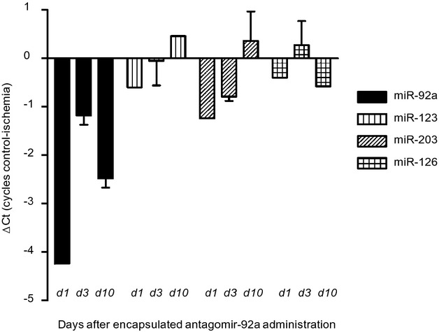 <t>Quantitative</t> analysis of expression of microRNA(miR)‐92a and other endogenous miRs as controls (miR‐123, miR‐203, and miR‐126) in ischemic myocardial tissue compared to nonischemic control myocardium of 2 replicate samples obtained at 1, 3, and 10 days after induction of ischemia (49 minutes) and intracoronary injection of encapsulated antagomir‐92a. Myocardial tissue was snap‐frozen and stored at −80°C for RNA analysis. Expression of miRs is represented as difference in cycles of amplification (ΔCt) in control versus ischemic zone assessed by <t>real‐time</t> RT‐PCR <t>reaction.</t> d indicates day. Data are mean±SEM. n=3. RT‐PCR indicates <t>reverse</t> <t>transcription</t> <t>polymerase</t> <t>chain</t> reaction.