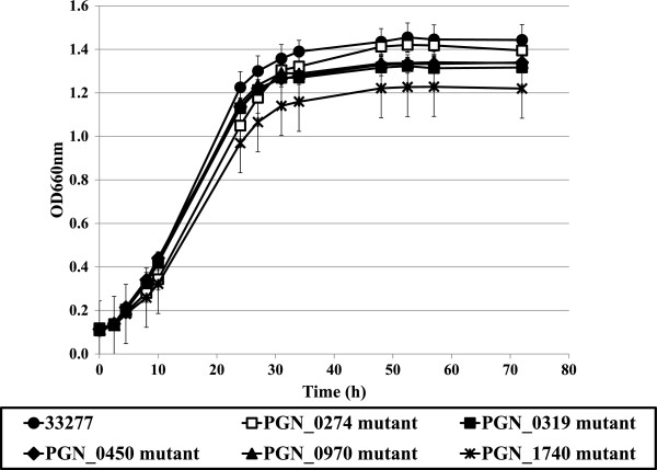 Growth of P. gingivalis 33277 and ECF sigma factor mutants. Growth curves of P. gingivalis 33277 (wild-type; circle), PGN_0274 mutant (KDP314; open rectangle), PGN_0319 mutant (KDP315; closed rectangle), PGN_0450 mutant (KDP316; diamond), PGN_0970 mutant (KDP317; triangle), PGN_1740 mutant (KDP319; cross) in enriched BHI broth. The data shown are mean ± SD of triplicate experiments.
