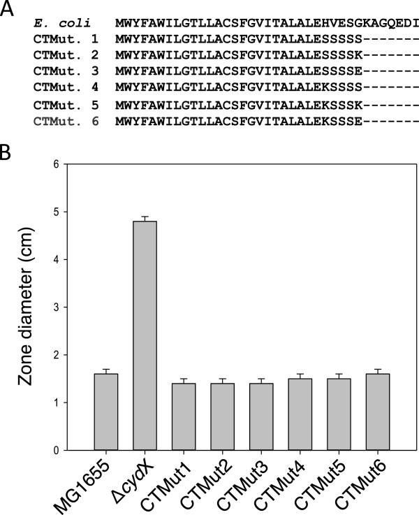 Testing the functional importance of the CydX C-terminal amino acids. (A) Alignment of the E. coli CydX protein sequence along with six mutant sequences containing mutated C-terminal amino acid sequences. (B) Assay of CydX function was conducted using a zone assay testing the sensitivity to β-mercaptoethanol. Sensitivity was measured using zones of inhibition, and the diameter of the zone after addition of 10 μL of 12 M β-mercaptoethanol to a plate of bacteria is shown. The average and standard deviation of zone sizes was calculated from at least three replicate plates. Alignments were generated using the program MUSCLE [ 57 ].