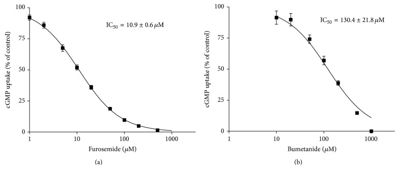 IC 50 determination for the inhibition of OAT2-mediated cGMP uptake by furosemide and bumetanide. In HEK293 cells stably transfected with OAT2 or empty vector, intracellular cGMP accumulation was determined after coincubation with 10 μ M cGMP (0.1 μ M [ 3 H]cGMP + 9.9 μ M unlabeled cGMP) and 1–1000 μ M furosemide (a) or 10–1000 μ M bumetanide (b), respectively, for 5 min at 37°C. The furosemide and bumetanide concentrations causing half-maximal inhibitory effect (IC 50 ) on cGMP accumulation in OAT2 expressing cells were calculated. Data are presented as mean ± SEM. n furosemide = 2–4; n bumetanide = 2.