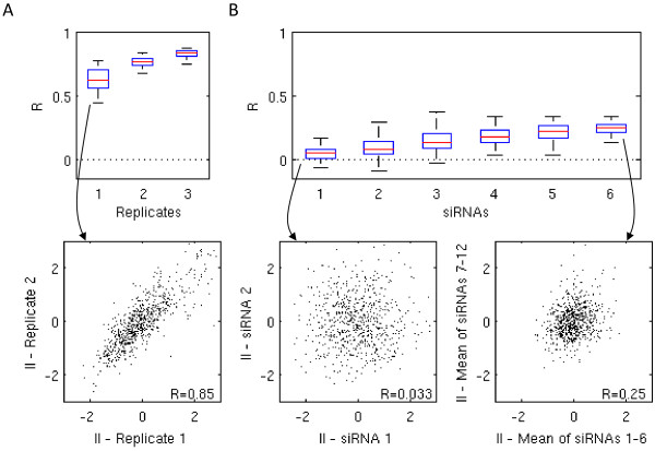 Using more siRNAs adds power and yields reproducible results. (A) The three boxplots show Pearson correlation coefficients R between screens performed using the same siRNA set. The numbers 1 to 3 correspond to the total number of replicate screens that we averaged and compared to another distinct set of replicate screens, averaged over the same number. We resampled the replicate screens up to 500 times. The scatter plot shows an example for the correlation of infection indices from the duplicate of Adenovirus Dharmacon pooled screen. (B) The set of six boxplots shows the Pearson correlation coefficients of the averaged readouts from 1 to 6 siRNA sets. The scatter plots depict the correlation of infection indices for Adenovirus , the first between two different single siRNAs and the second between each an average over six siRNAs.