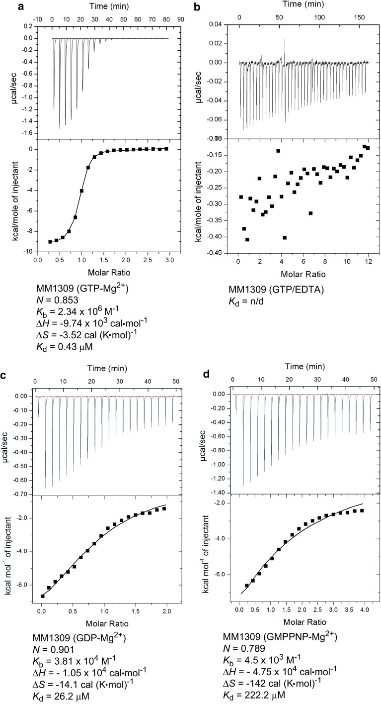 ITC analysis. The upper and lower panels display the ITC titration curves and the binding isotherms, respectively, for MM1309 with GTP·Mg 2+ ( a ), GTP without Mg 2+ ( b ), GDP·Mg 2+ ( c ), and GMPPNP·Mg 2+ ( d ). N , the binding stoichiometry; K b , the observed binding constant; K d ( K d = 1/ K b ), the dissociation constant; ∆ H , the binding enthalpy; ∆ S , the binding entropy