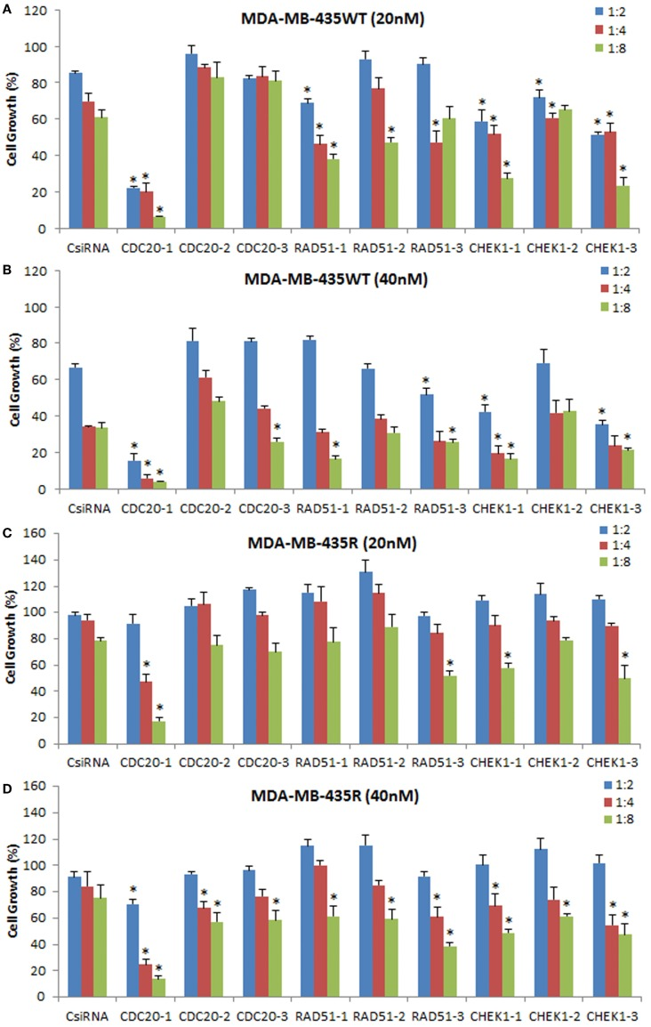 Inhibition of cell growth using DsiRNAs against CDC20, RAD51, and CHEK1 at 20 and 40 nM DsiRNA concentrations with different DsiRNA:PEI–LA ratios in MDA-MB-435WT (A,B) and MDA-MB-435R (C,D) . For each target proteins, three different DsiRNA isoforms were used. The significance (*) at p