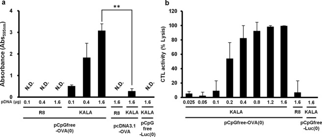 MHC class-I restricted antigen presentation and in vivo CTL assay. ( a ) BMDCs were transfected with pcDNA3.1-OVA, pCpGfree-OVA(0) or pCpGfree-Luc(0) (KALA-MEND only) by means of R8-MEND or KALA-MEND. Transfected cells were co-cultured with a B3Z T-cell hybridoma for 15 h at 37°C. The co-cultured cells were then incubated with chlorophenol red β-D-galactopyranoside buffer for 4 h at 37°C. The absorbance at 595 nm was used as an index for antigen-presentation activity. The absorbance observed in non-treated BMDCs was subtracted from each group. Data are mean ± SD of three independent experiments. Non-detected (N.D.)means under the detection limit. Statistical analyses were performed by the one-way ANOVA, followed by Bonferroni test. ** P