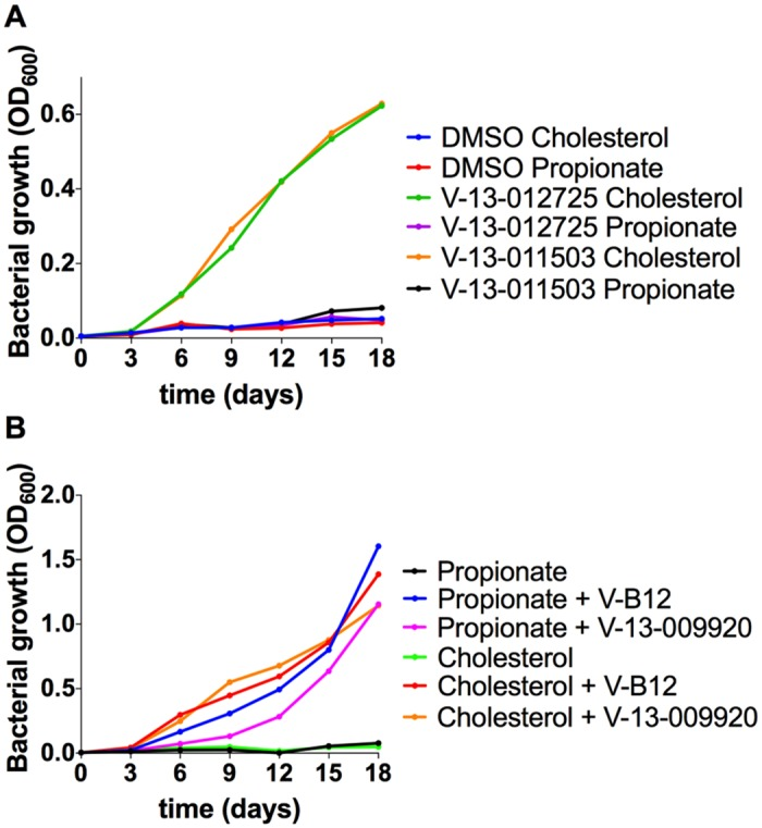 Chemical rescue of Mtb ΔIcl1. (A) Growth of Mtb ΔIcl1 was monitored in 7H9 OADC containing cholesterol (100 μM) or propionate (100 μM) in the presence of V-13–012725 (25 μM) and V-13–011503 (25 μM). Growth rescue by the compounds V-13–012725 and V-13–011503 is specific to cholesterol with no growth is observed in media containing propionate. (B) The compound, V-13–009920 (25 μM) rescues Mtb ΔIcl1 growth in 7H9 OADC media containing cholesterol (100 μM) and propionate (100 μM). Chemical rescue by V-13–009920 is comparable to rescue by vitamin-B12 (10 μg/ml). The data are representative of two independent experiments.