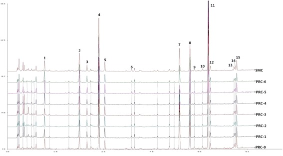 HPLC-DAD fingerprints of seven batches of PRC and SMC at 280 nm.